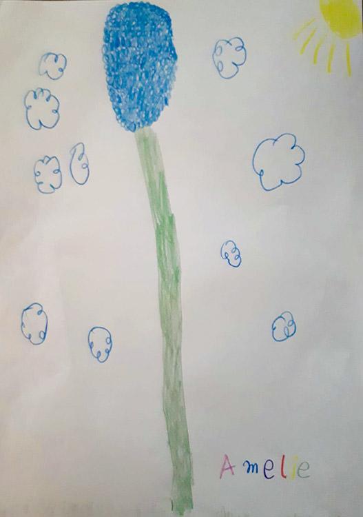 Blume Amélie